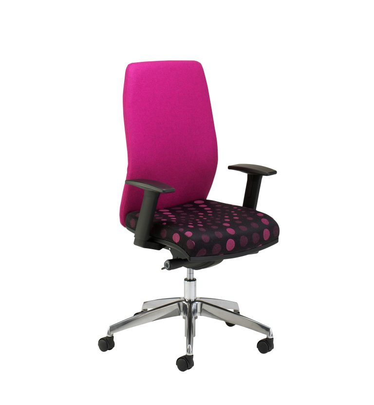 Exquisit Task Chair with Arms