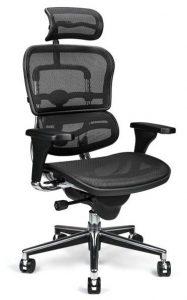 Ergohuman Mesh Task Chair