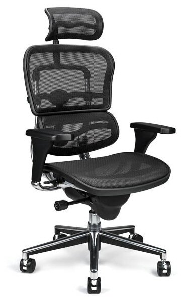 Ergohuman Mesh Task Chair
