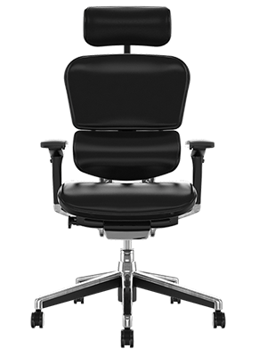 Ergohuman Task Chair Black Leather
