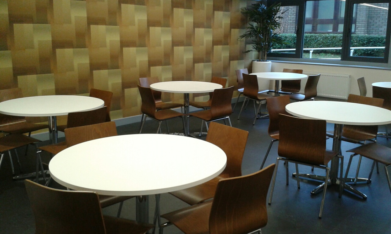 Espacio Chairs Walnut In Situ