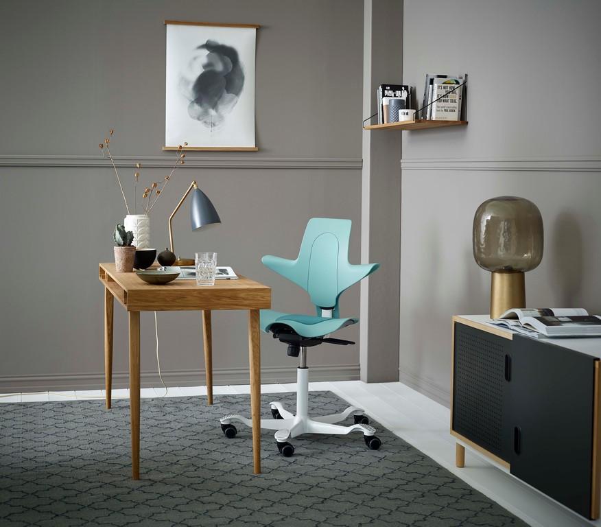 HÅG-Capisco-Puls-Seagreen-Home-Office-In-Situ