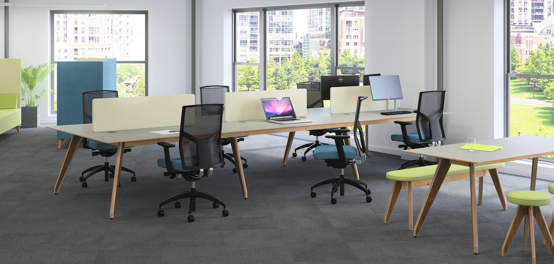 Ligni Bench Desks with Angled Birch Ply Legs