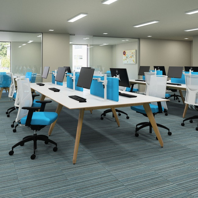 Ligni Bench Desks with Privacy Screens