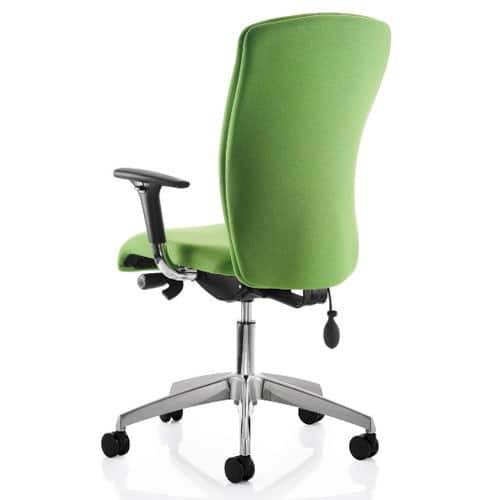 Poise-task-chair-back-view-with-arms