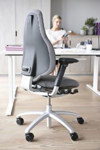 RH Mereo 220 In Office